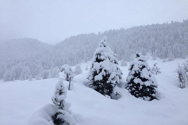 Schneebericht: Der Winter ist da und bleibt, Schneebedingungen vielerorts gut bis sehr