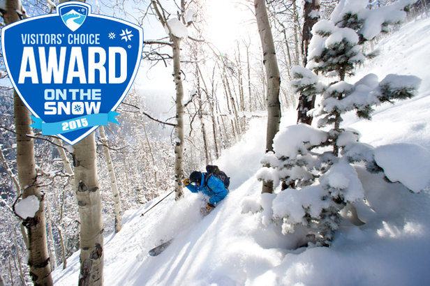 2015 Visitors' Choice Awards: The Best Ski Resorts of the Yearundefined
