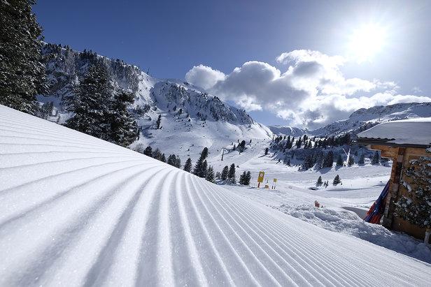 Val di Fiemme - Alpe di Pampeago, Ski Center Latemar