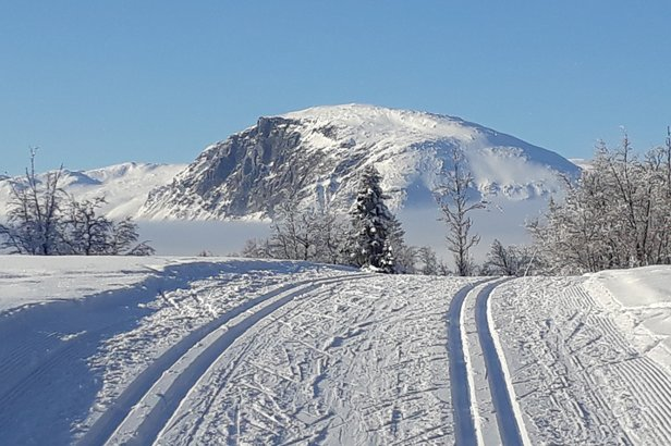 Over 1200 kilometer preparerte langrennsspor i Hallingdal - ©Hemsedal Utmarksservice