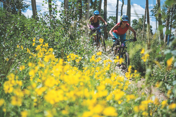 Riding during Crested Butte's wildflower season.  - ©Trent Bona / CBMR