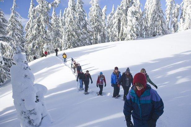 Leichtester Klettergurt Welt : Natur bewegung entspannung: schneeschuhwandern als perfekter