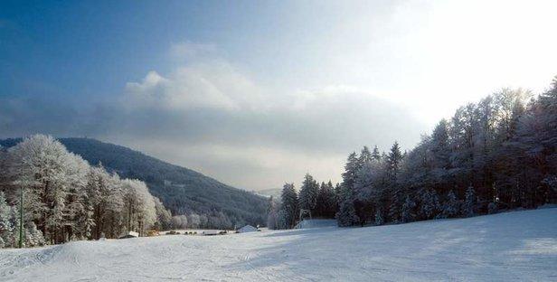 Skigebiet Steinberglift | Region Sonnenwald