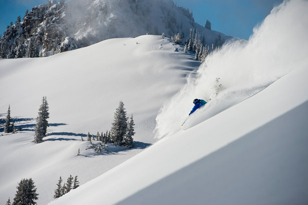 It's not hard to see why Alta is a locals' favorite.  - © Lee Cohen