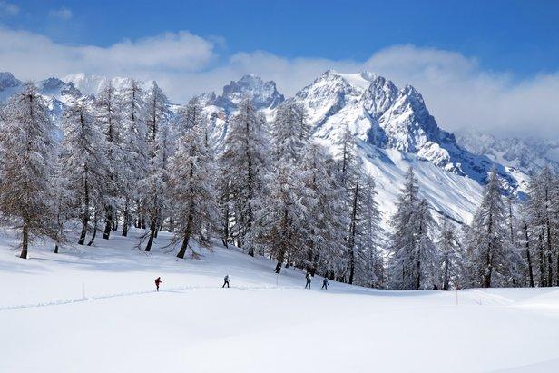 Fat bike, traineaux à chiens, raquettes à neige... Le domaine nordique de Puy Saint Vincent permet la pratique d'une multitude d'activités
