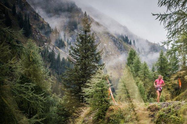 Ledlenser Women's Trail in Zell am See-Kaprun - 3 Tage Trailrunning nur für Frauen- ©www.wisthaler.com
