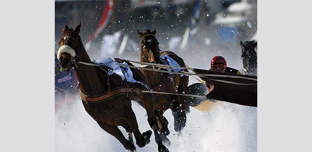 White Turf - Die Faszination der edlen Pferde im Schnee
