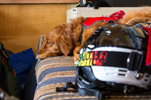 How to properly store your ski gear for the season after the resorts have closed.