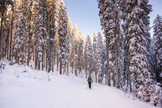 Slovenië in de winter.  - © Iztok Medja