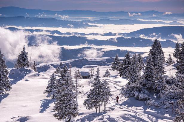 Velika Planina, Slovenië.  - © Iztok Medja