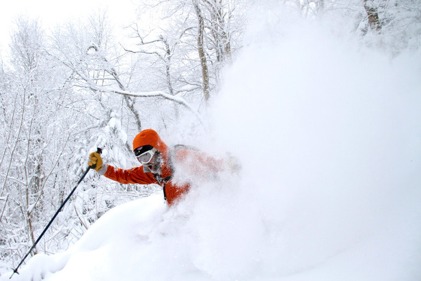 "In February a storm dropped more than 20"" of premium, Grade A Vermont powder in many areas of the Northeast, including Mad River Glen, featured here."