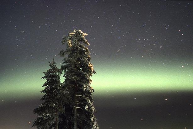 Northern Lights in Lapland  - © Ruka