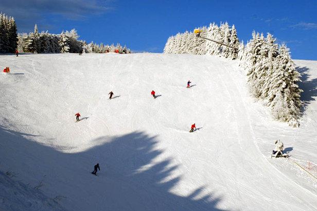 Dagtrips naar de sneeuw