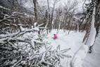 Photo Gallery: Supreme Steeps, Stashes & Snow at Stowe  - © Liam Doran