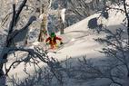 Japanuary: Pekné freeriderky na výlete v krajine prašanu a vychádzajúceho slnka - © Caroline Van T Hoff