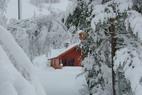 Sneeuwbericht: Waar ligt momenteel de sneeuw in Europa en Noord-Amerika?