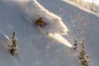 Photo Gallery: 10 Favorite Powder Shots from Winter 2012/2013  - © Liam Doran