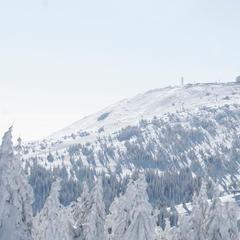 Skifahren in Serbien (Kopaonik, Dinarisches Gebirge) - ©Ski resorts of Serbia