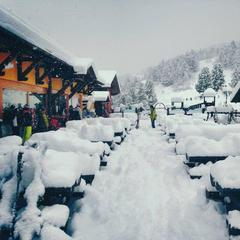 Fresh snow in Italy Dec. 26, 2013 - ©Bormio Ski