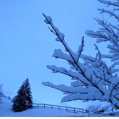 Artesina - Neve fresca 17 Gen 2014