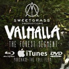 Forest Ski Segment From Valhalla