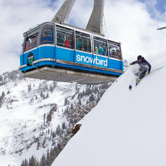 Ski Tester puttin on a show for tram riders.  - ©Cody Downard Photography