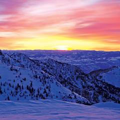 Snowbird beauty - ©Snowbird Ski and Summer Resort