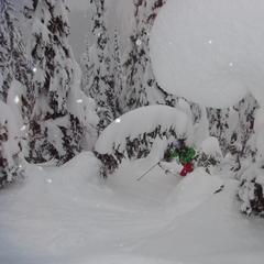 Powdery tree skiing, Whitewater - © Whitewater
