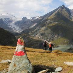 Die letzten 400 Höhenmeter geht es noch einmal steil bergab und die Oberschenkel müssen ganze Arbeit leisten - ©bergleben.de