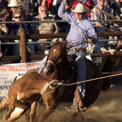 Cowboy-Up for the Jackson Hole Rodeo
