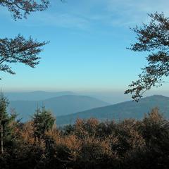 Wandertipp der Woche: Hirschenstein über Mühlgrabenweg - © Tourist-Info Sankt Englmar