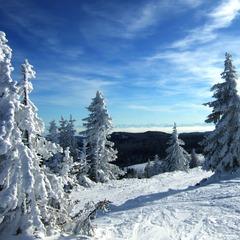 Scenic Feldberg, Germany.Winterlicher Schwarzwald, © Rainer Sturm / PIXELIO