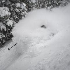 Snowiest Resort of the Week: 2.18-2.24 - ©Snowbird (@snowbird) // Chris Segal (@chris_segal) Skier: Eric Fabbri (@efabbri)