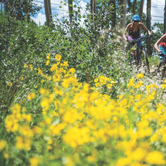 Top 10 Mountain Biking Trails in North America - ©Trent Bona / CBMR