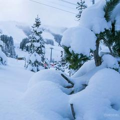 Gallery: Snow blankets alpine resorts 1/12/17 - ©Courchevel/Facebook