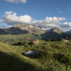 St. Anton am Arlberg - ©TVB St. Anton am Arlberg/Fotograf Bernd Ritschel