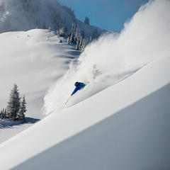 Alta's powder and terrain - © Lee Cohen