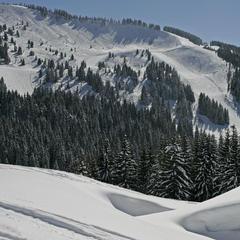 Combe de Gron, Les Carroz. Les Carroz maakt deel uit van de Grand Massiv skiregio, met in totaal 260 km aan pistes in een bosrijk gebied met een gemoedelijke sfeer