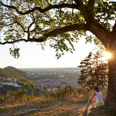 Vacances d'automne : 10 idées d'activités dans les Montagnes du Jura - ©M.COQUARD et E.DETREZ Bestjobers / Bourgogne-Franche-Comte Tourisme
