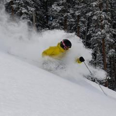 Powder off Telluride lift 5 - © Telluride Ski Resort