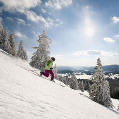Chaussez vos skis, la saison peut commencer dans les Montagnes du Jura - ©Montagnes du Jura