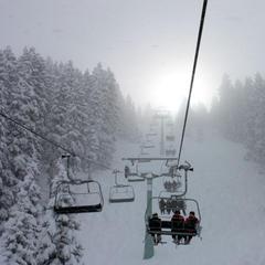 Powder in Mayrhofen - ©Skiinfo.de