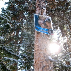 The John Denver Shrine at Aspen Mountain. - ©Amanda Rae