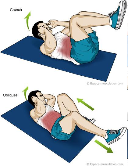 Travailler son renforcement musculaire